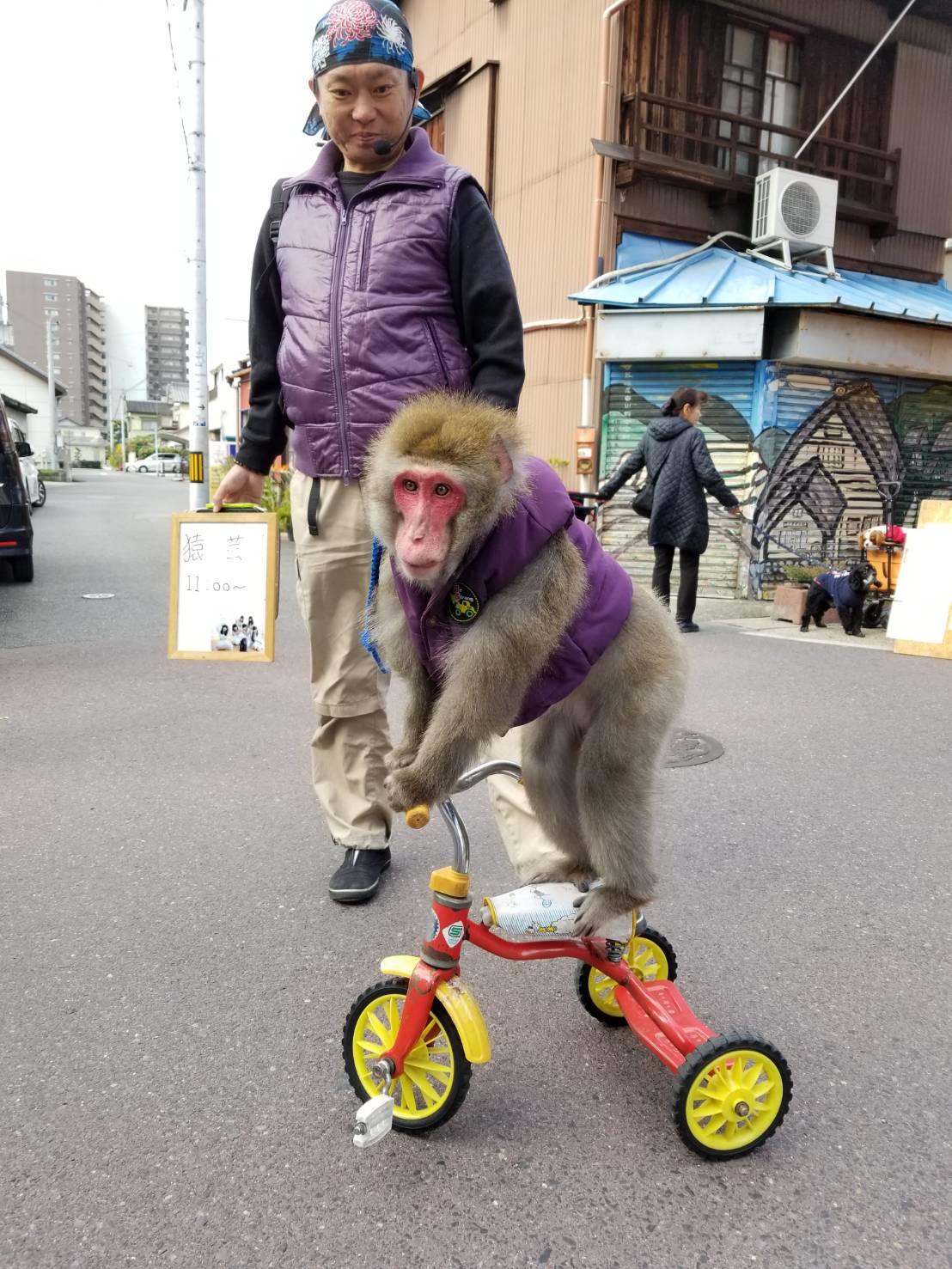 勝川弘法市_お猿の十兵衛